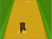 Click to Play Dog Dash
