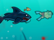 Click to Play Angry Shark Online